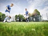 Deutschland macht den Zeckencheck - Fußballvereine gesucht